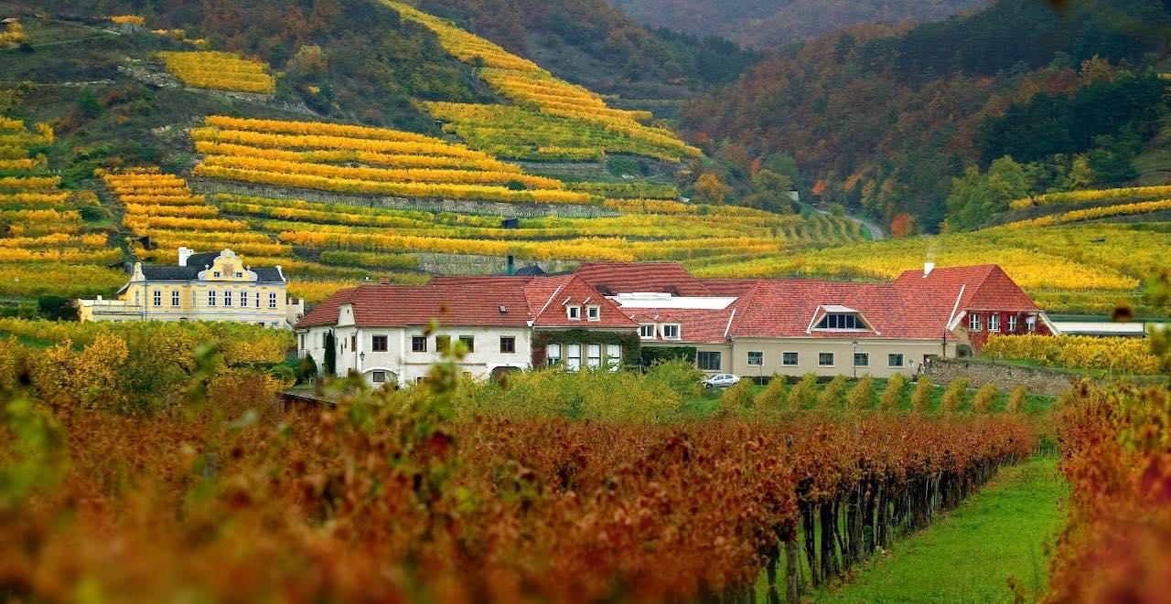 Domäne Wachau Winery