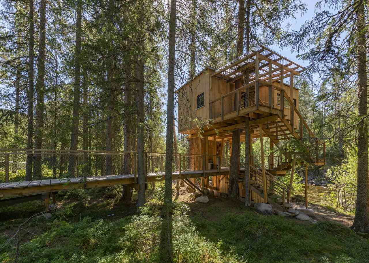 Å Auge Treetop House 3 - Photo - Aacamp.com