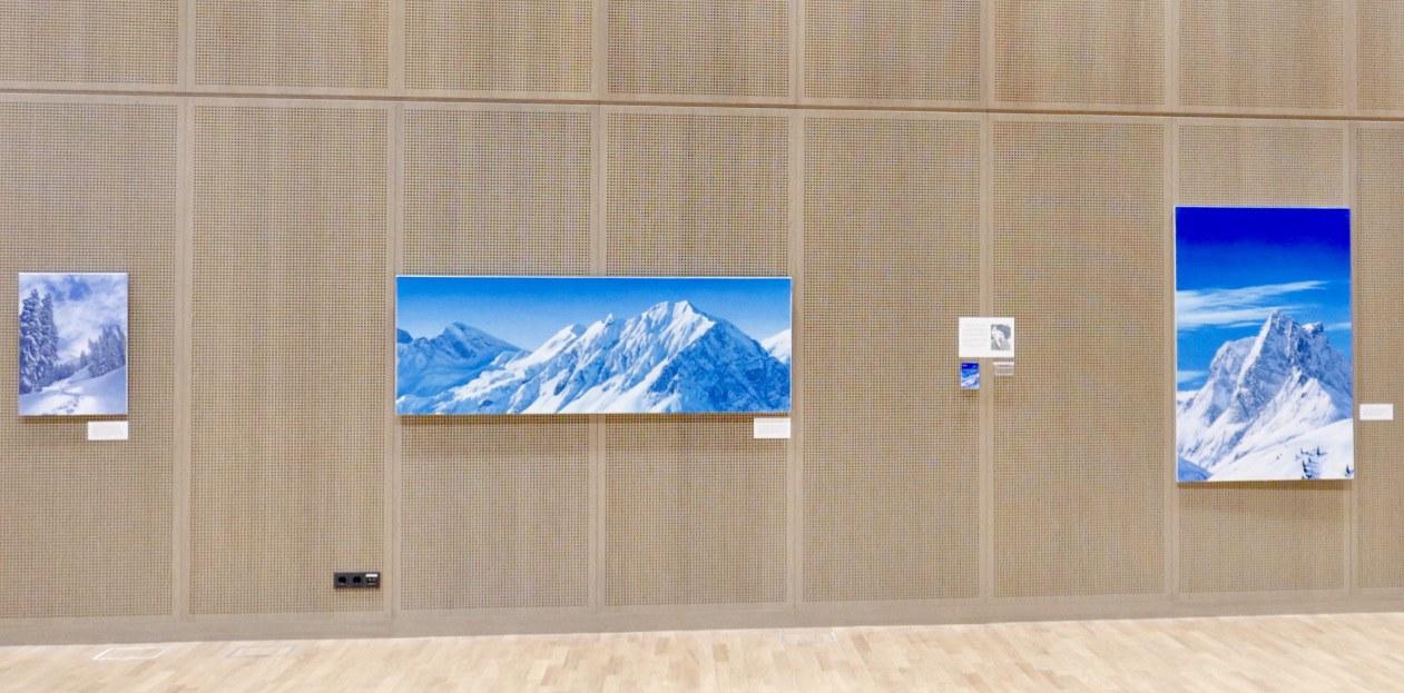 Adam Attew art exhibition