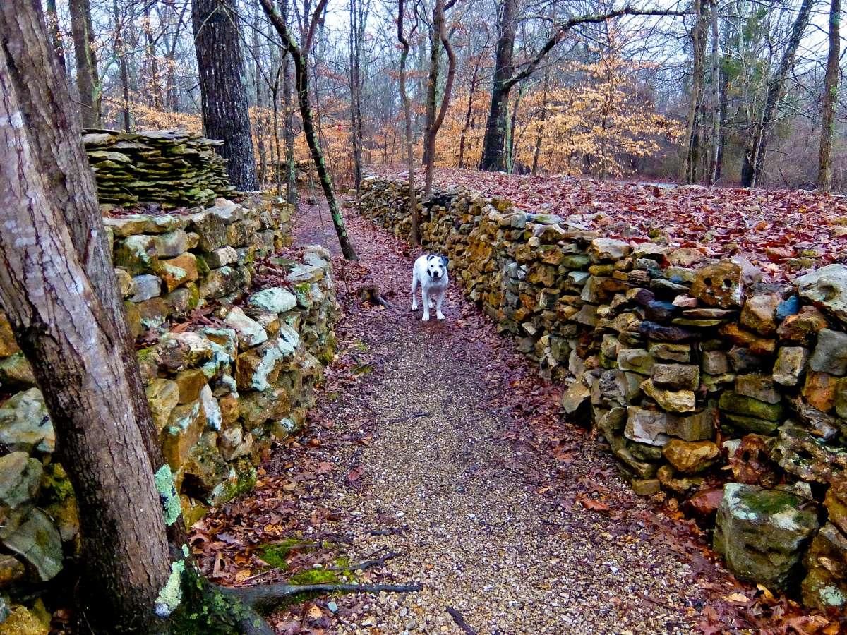 Alabama - Tom's Wall