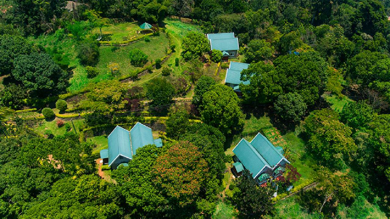 Ambady Estate in Kerala from above