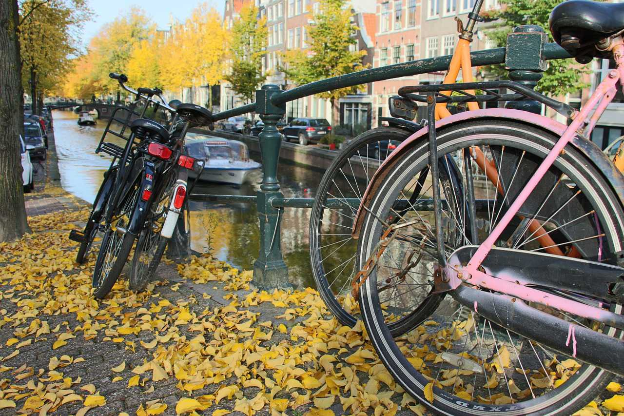 Amsterdam Autumn