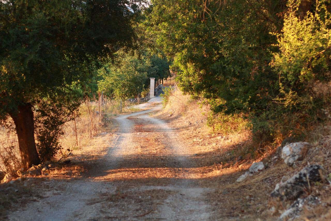 An offbeat path leading to Valldemossa from Serra de Tramuntana