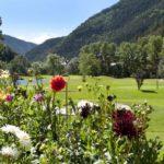 Andorra - mountain flowers