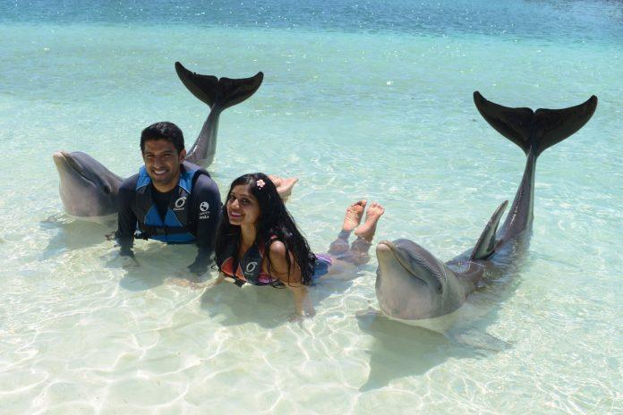 Bahamas Meet the Dolphins at Blue Lagoon