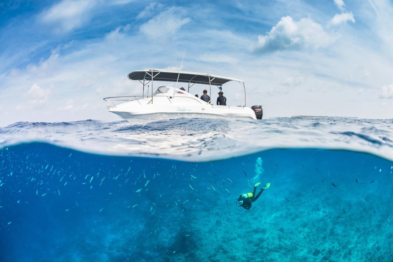 Blue Safari, alphonse-diving-