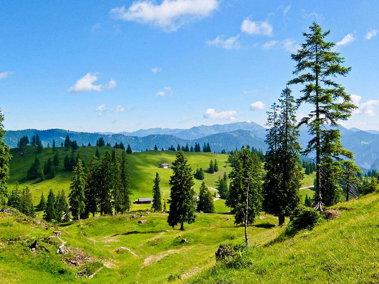 Brandenberg Alps, Tyrol - Farms and Alps