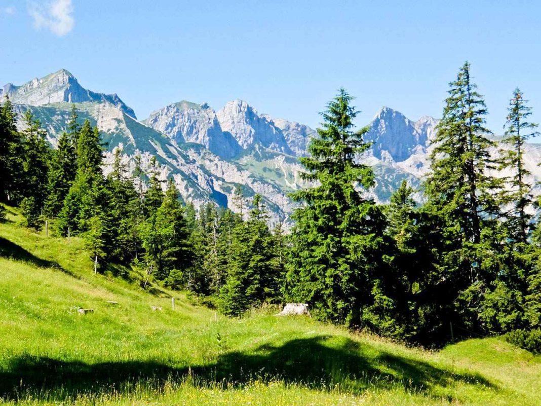 Brandenberg Alps, Tyrol