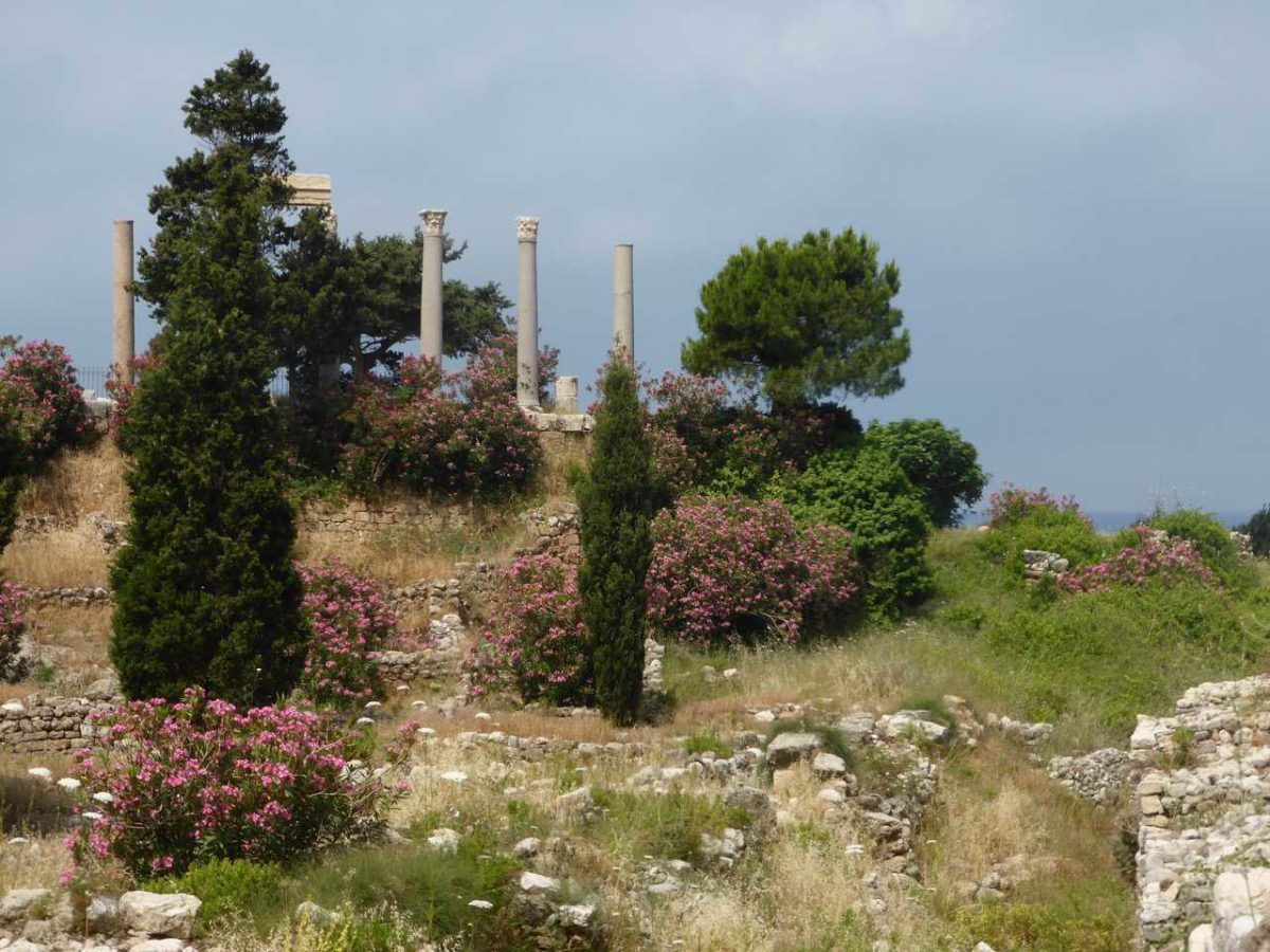 Byblos - Roman Colonnades, Beirut