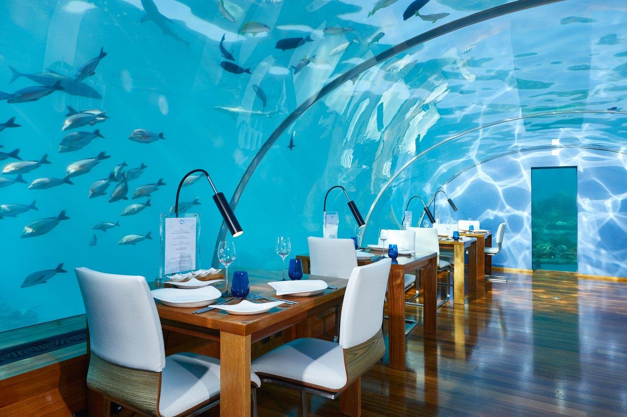 Ithaa undersea restaurant Conrad Maldives