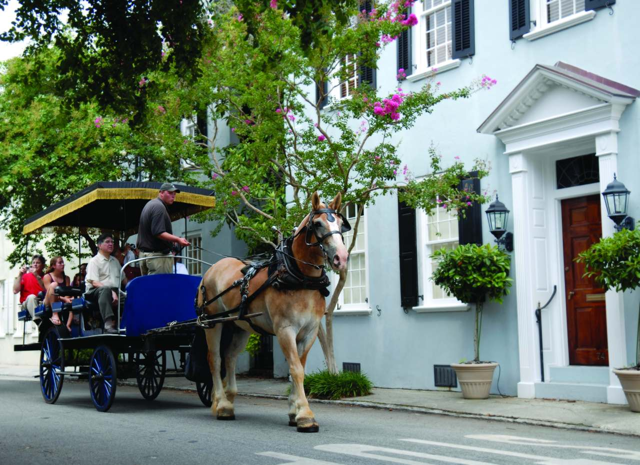 Carriage Tour in Charleston