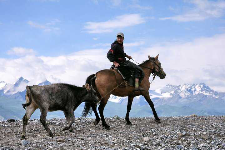 Central Asia - Nomads in Kyrgyzstan