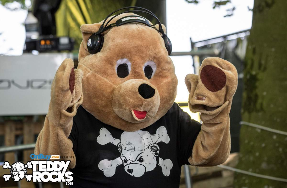 Mr Bear at Teddy Rocks Festival