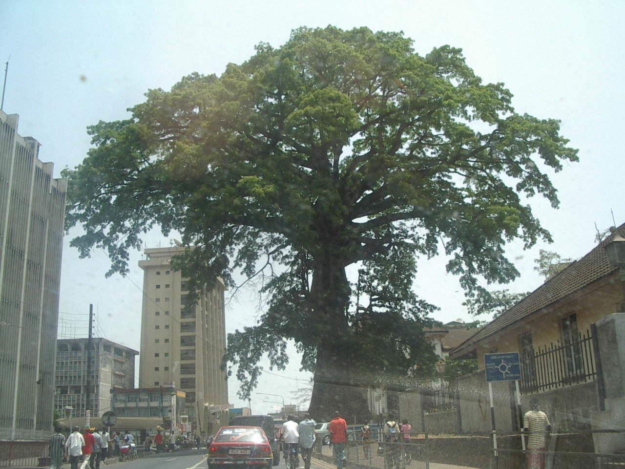 Cotton Tree, Freetown, Sierra Leone