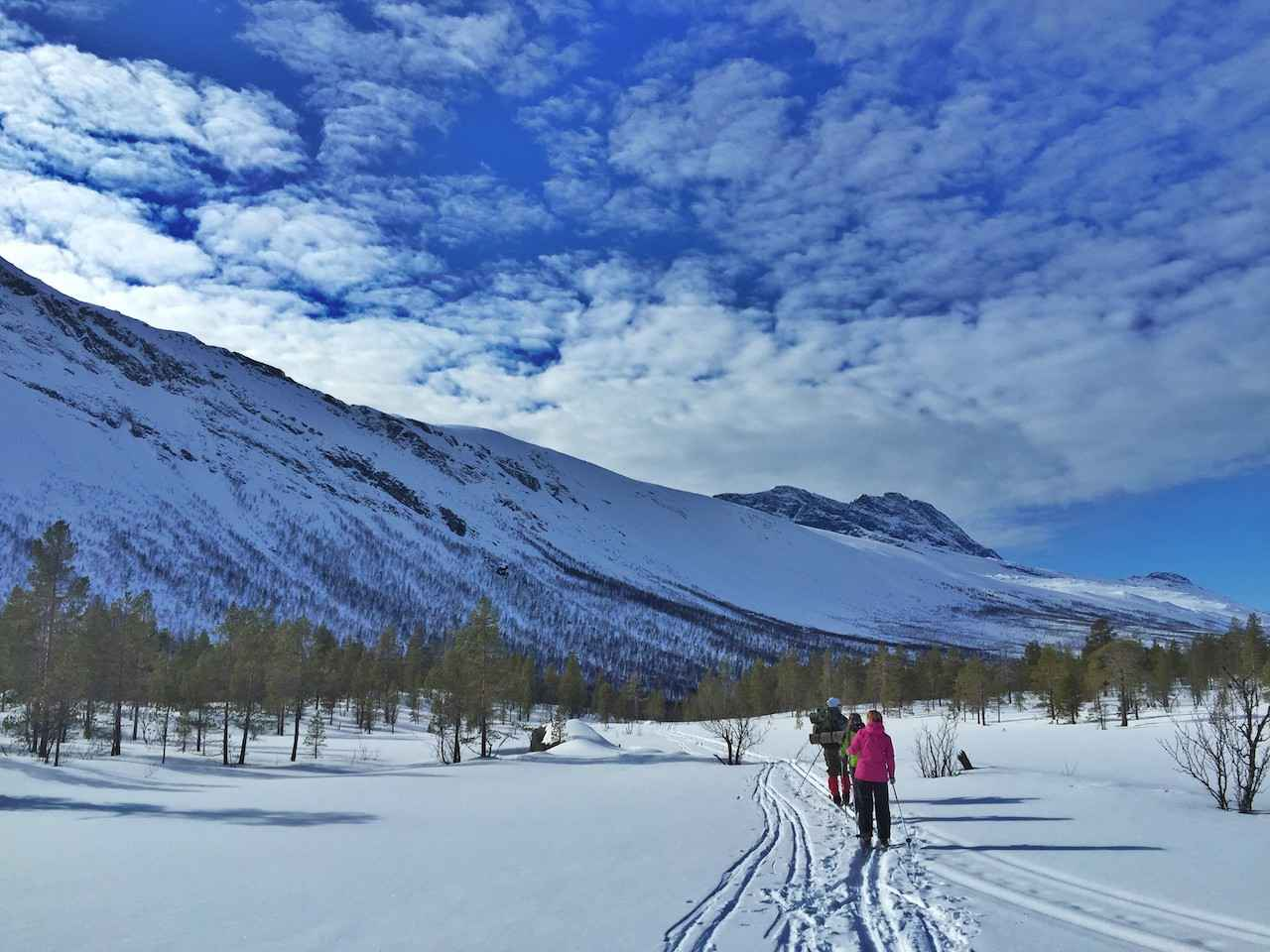 Cross country skiing in Beisfjord, Nordland