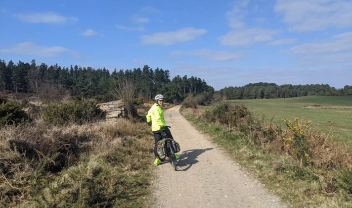 Cycling Wareham Forest