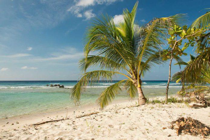 Drill Hall Beach, Barbados