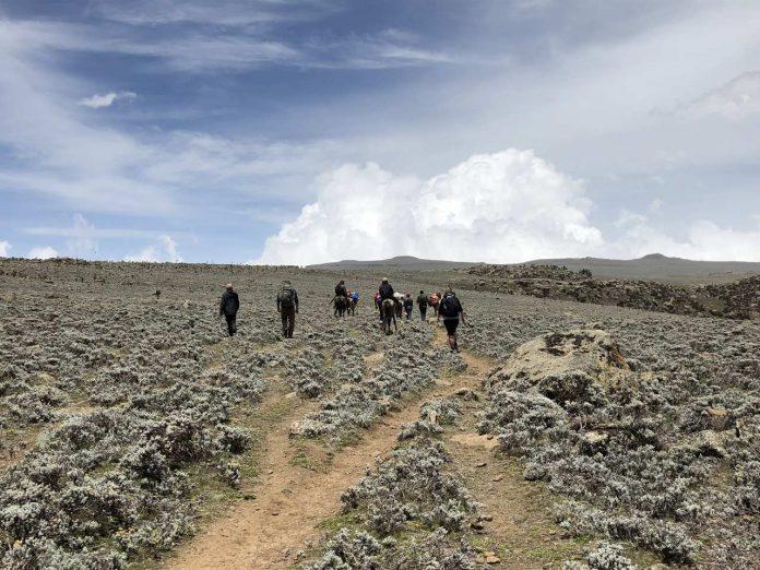 Ethiopia trekking