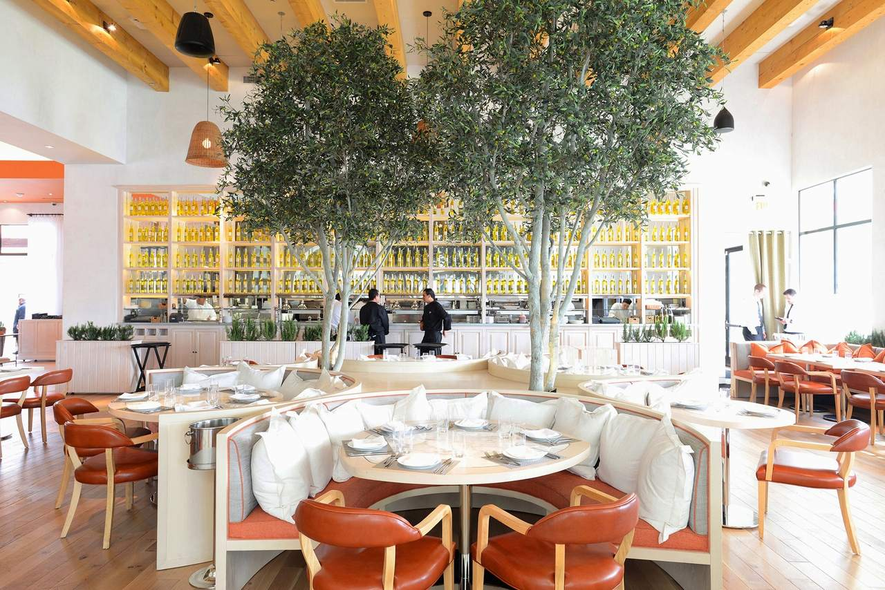Fig and Olive Orchard Room