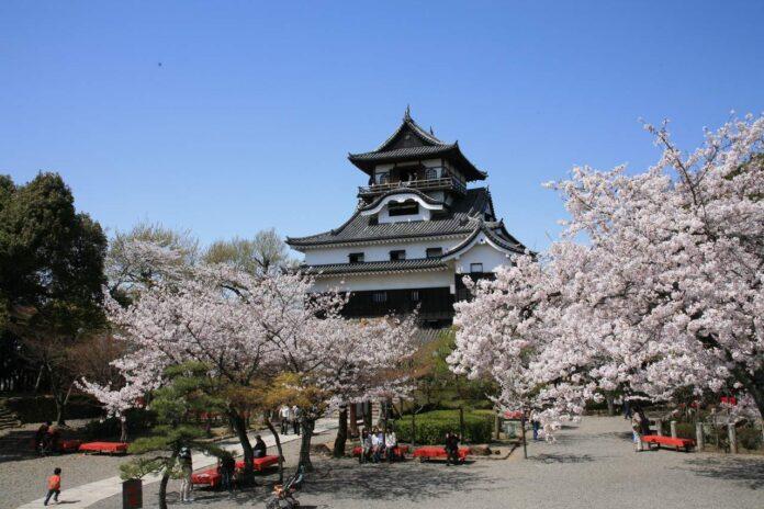 Inuyama Castle (©National Treasure Inuyama Castle)