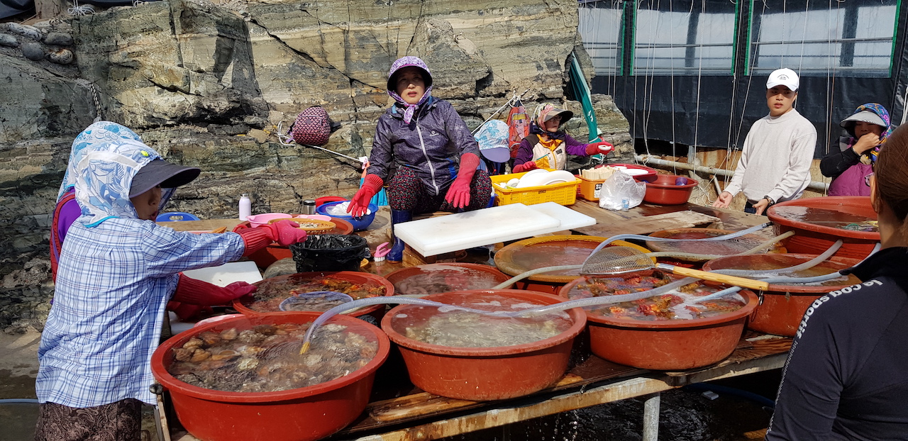Jagalchi Market - Busan