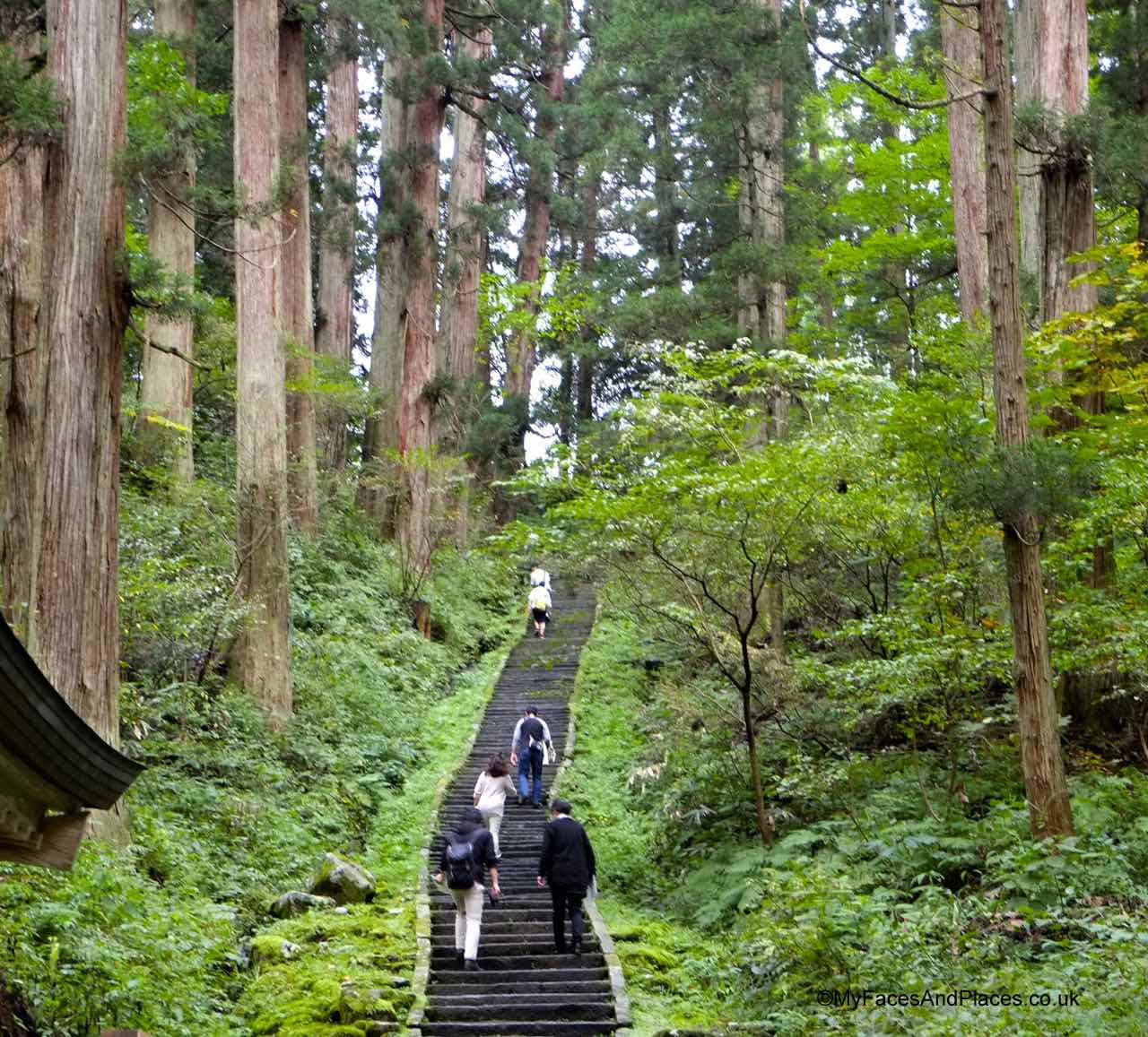 Japan - The 2,446 Ishi-Dan stone steps to the Sanjin Gosaiden temple on the summit of Mt Haguro