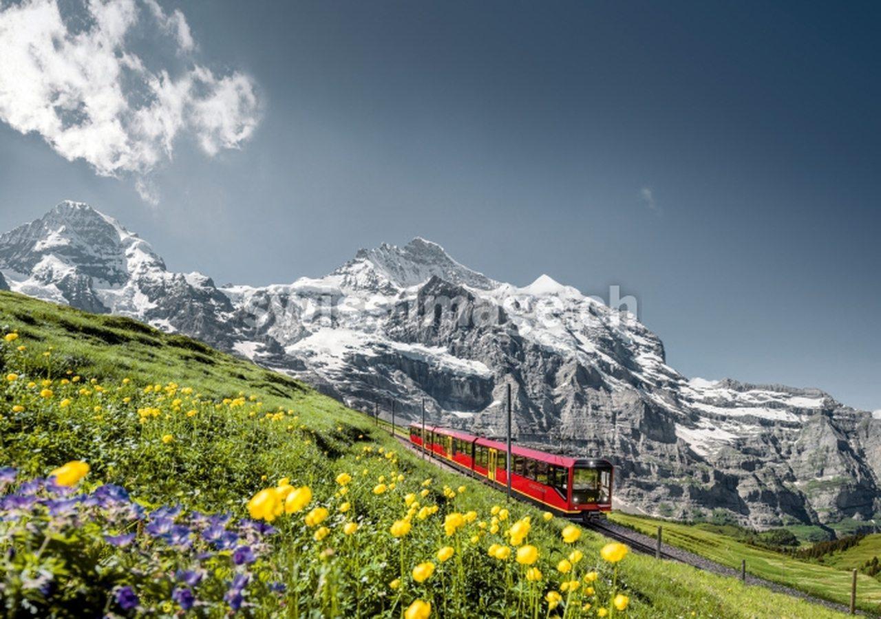 Jungfrau Railway c. Jungfraubahnen AG:Swiss Travel System