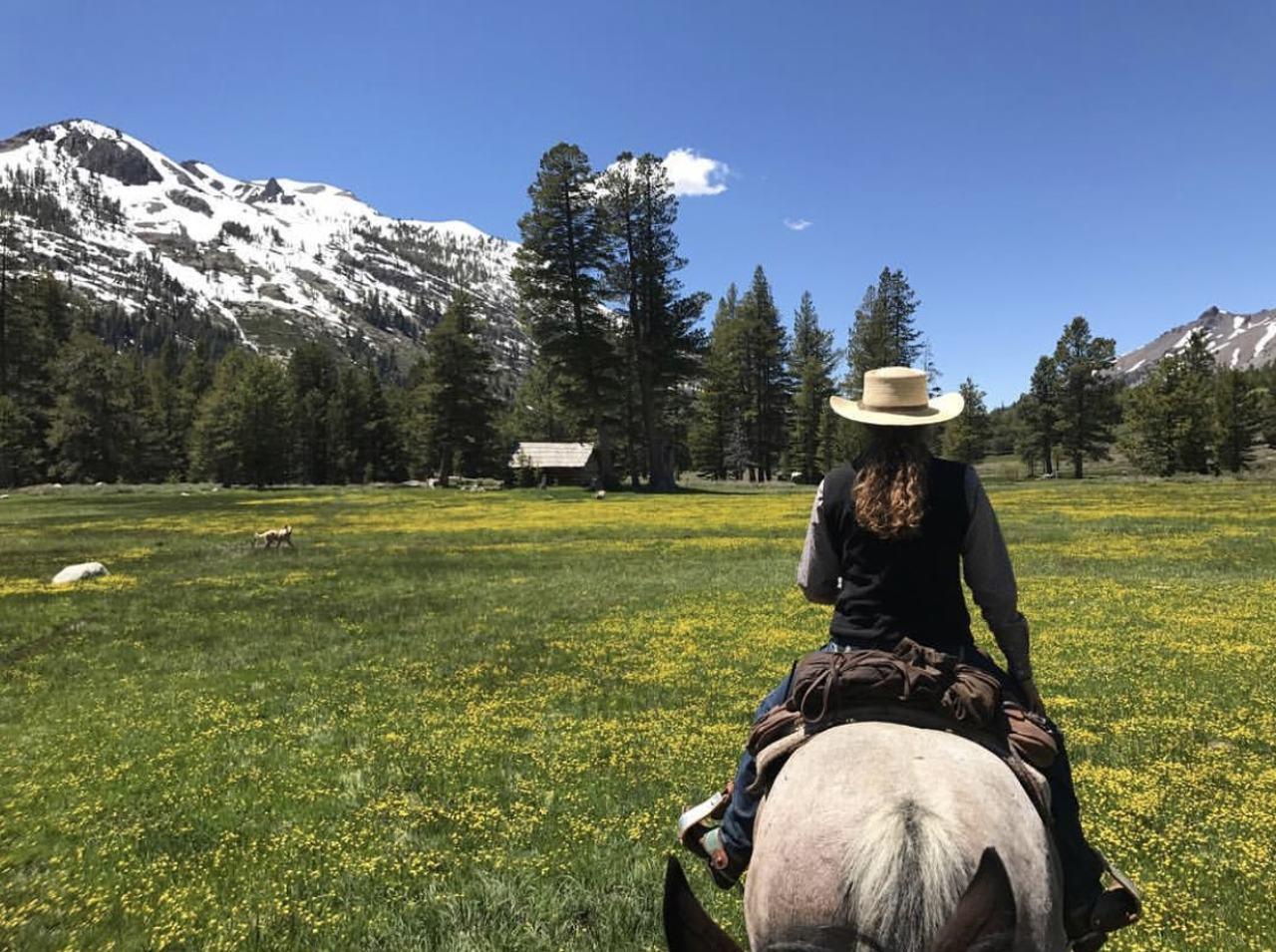 Kennedy Meadows horseback riding