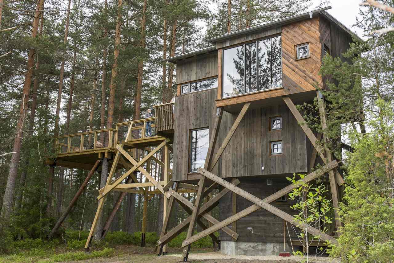 Kråkeslottet, Treehouse