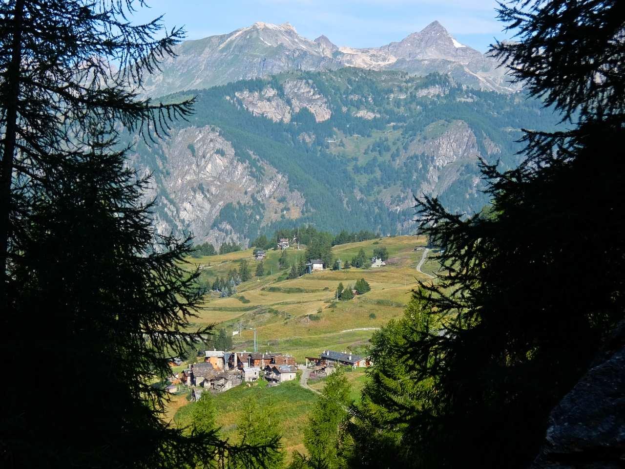 Matterhorn and Chamois