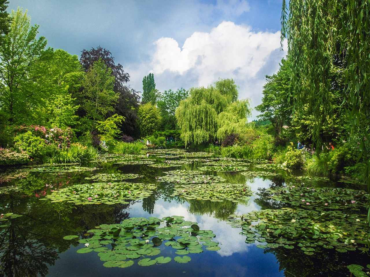 Monet at Giverny Gardens