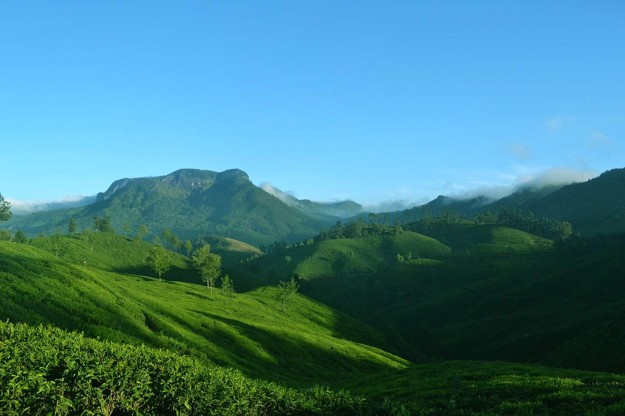 Munnar mountains Kerala
