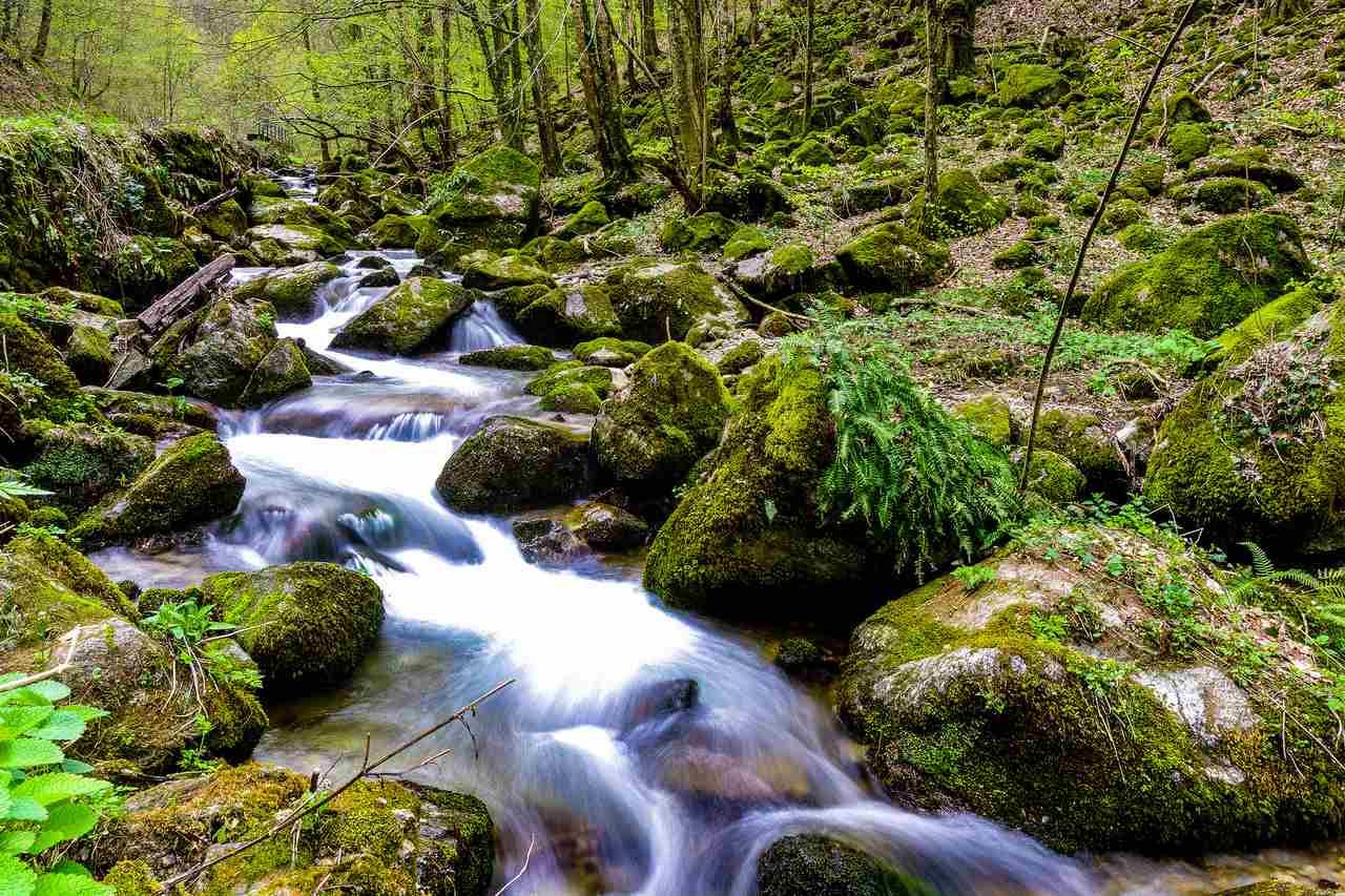 Papuk Nature Park