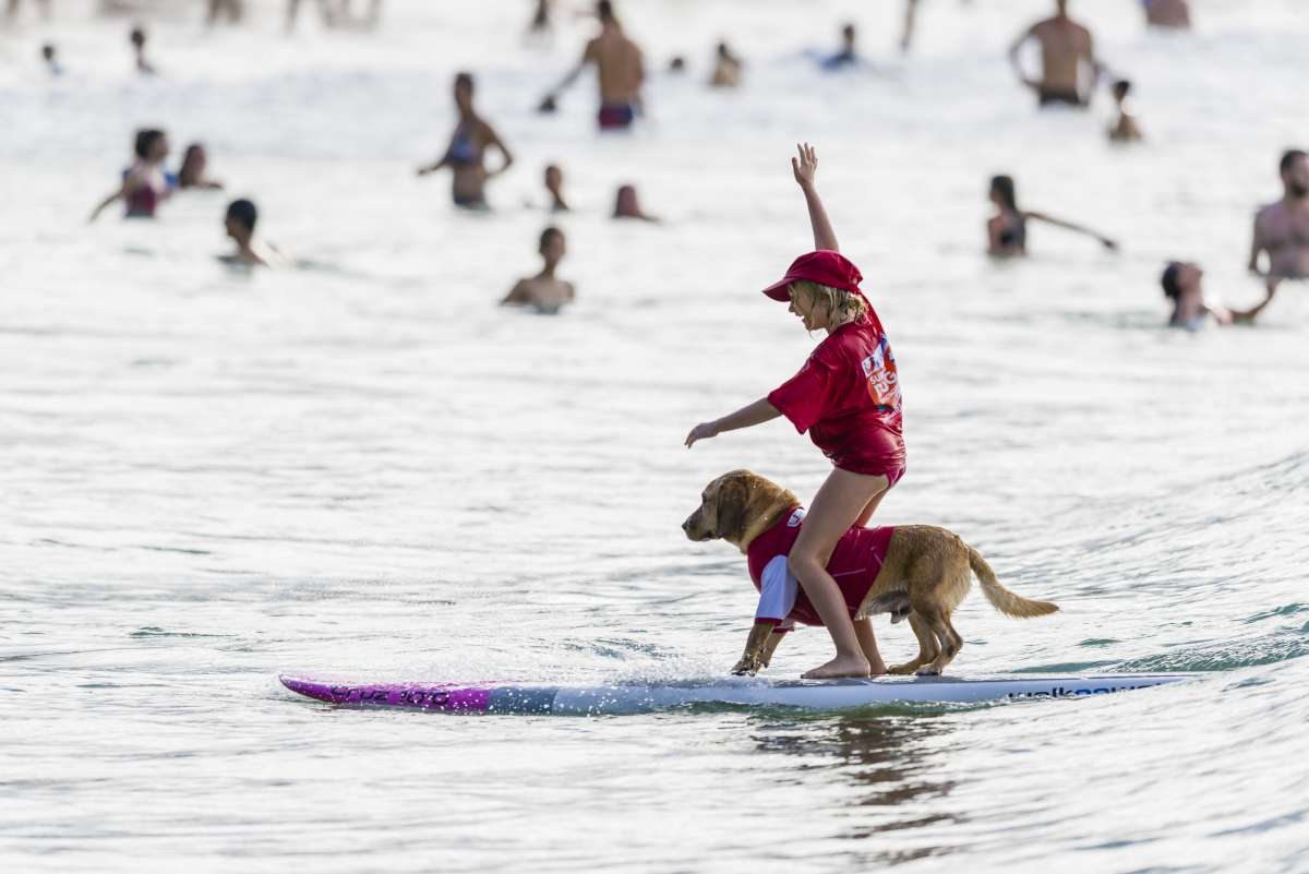 Noosa Festival of Surfing - sufer boy with dog