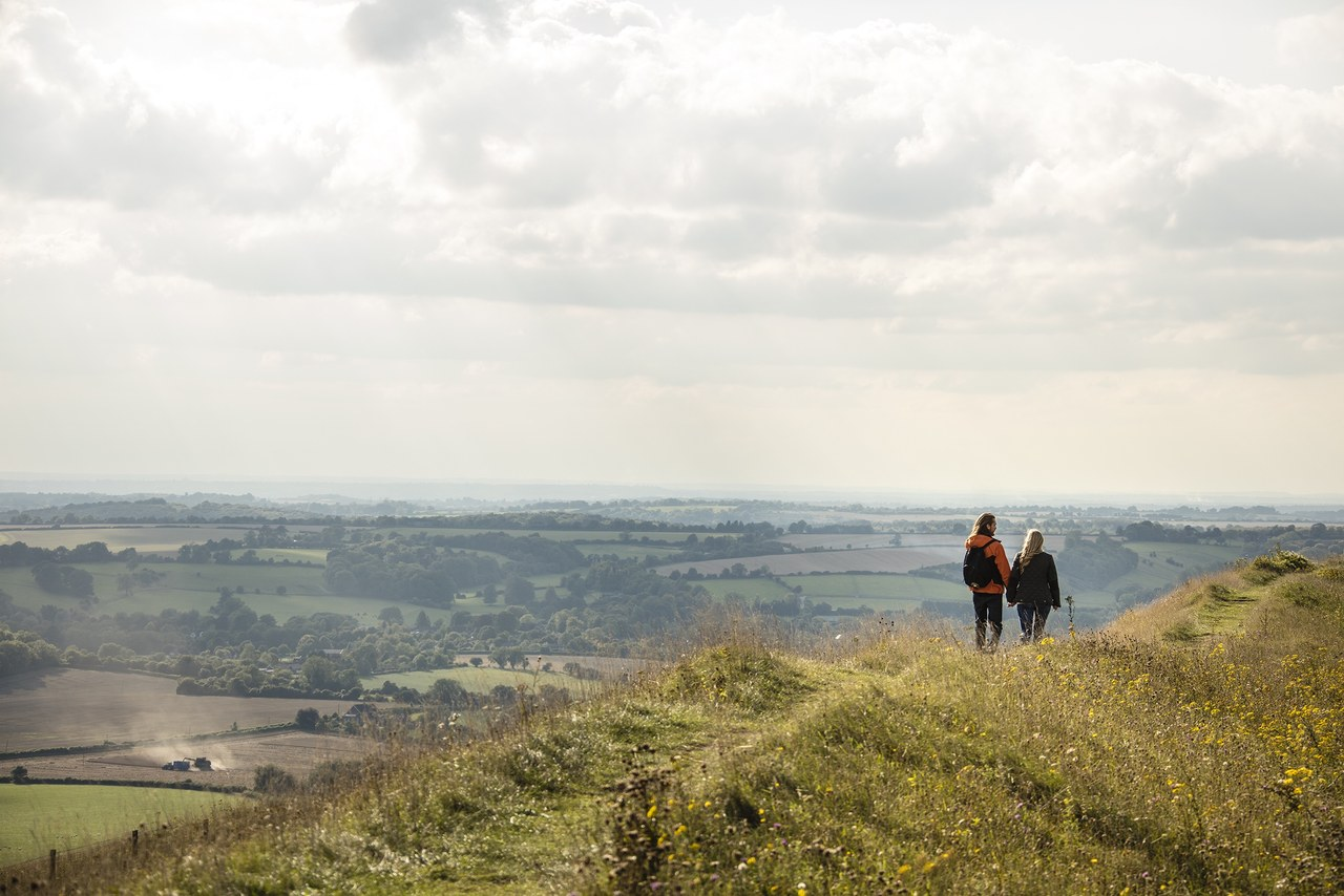 Old Winchester Hill, South Downs