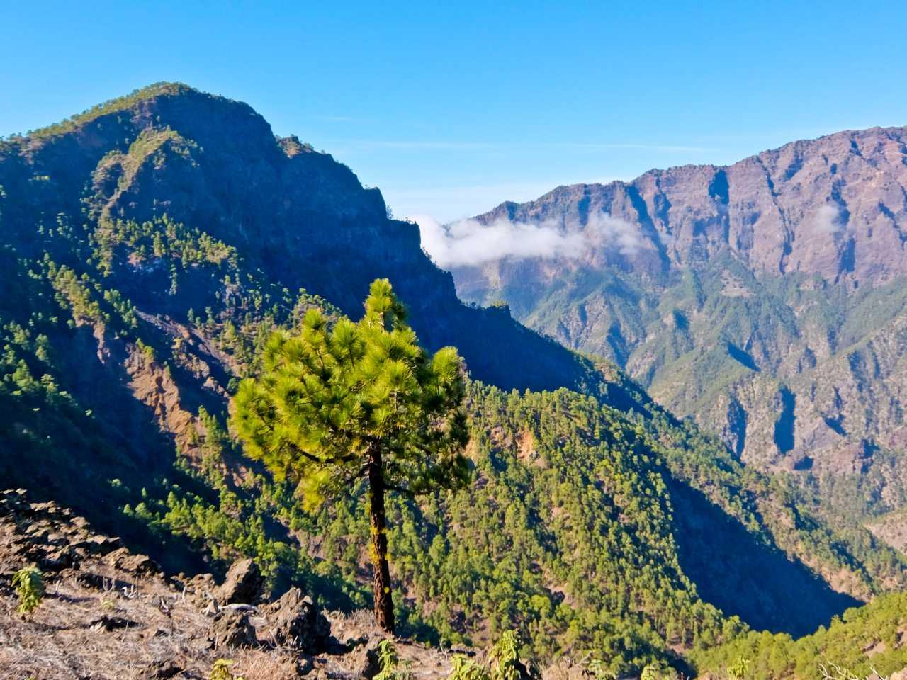 Pico Bejanado and Caldera, La Palma
