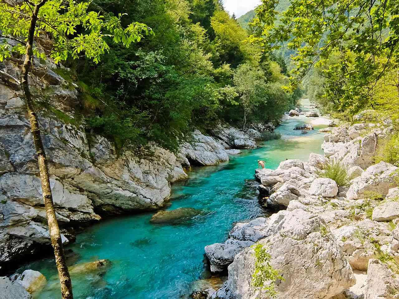 River Soča, Slovenia
