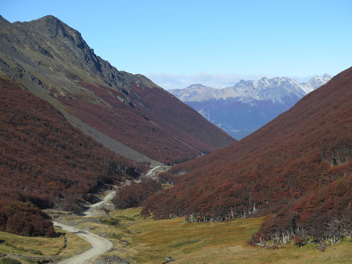 Road toLagoFagnano, Tierra del Fuego