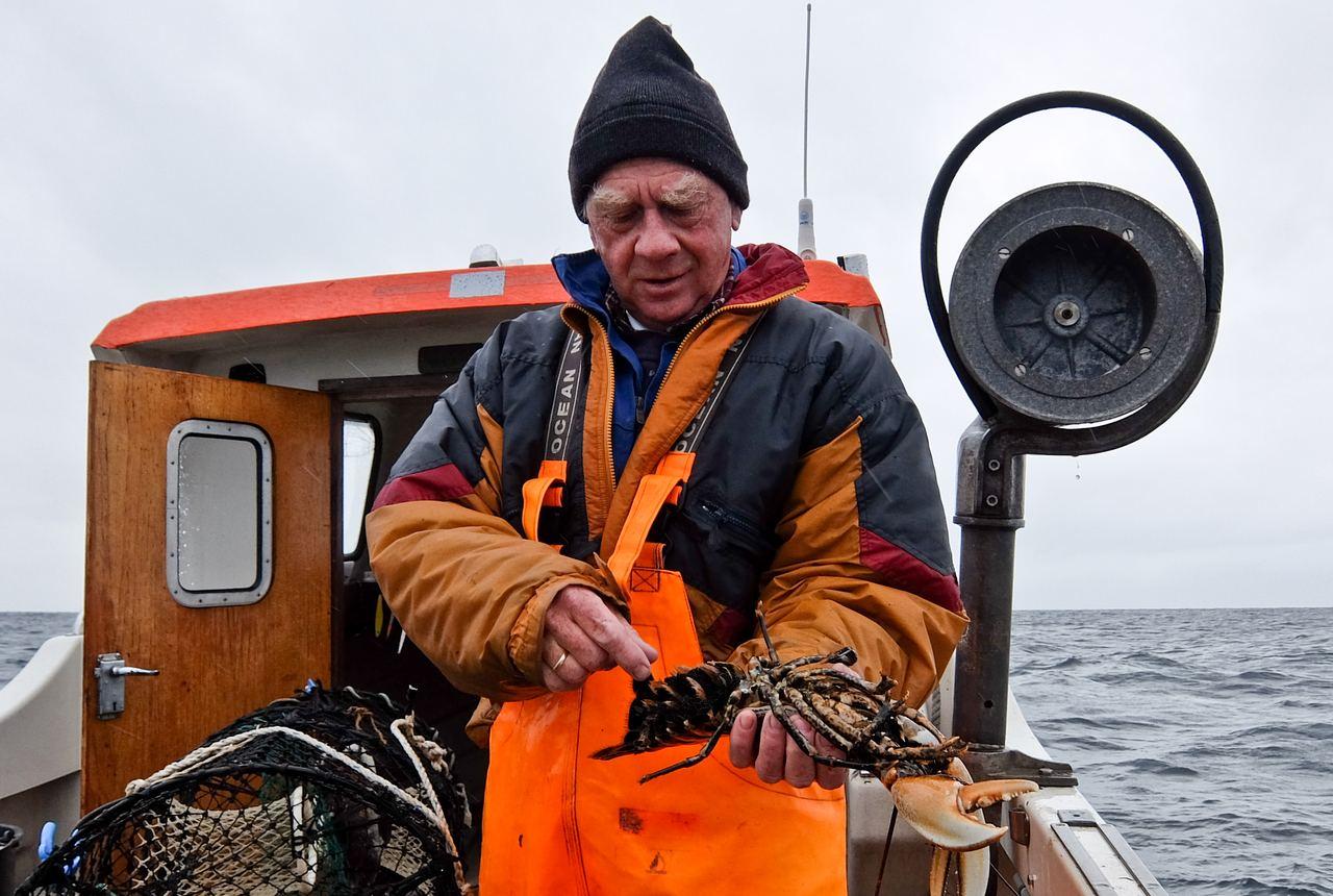 Sandøya Lobster