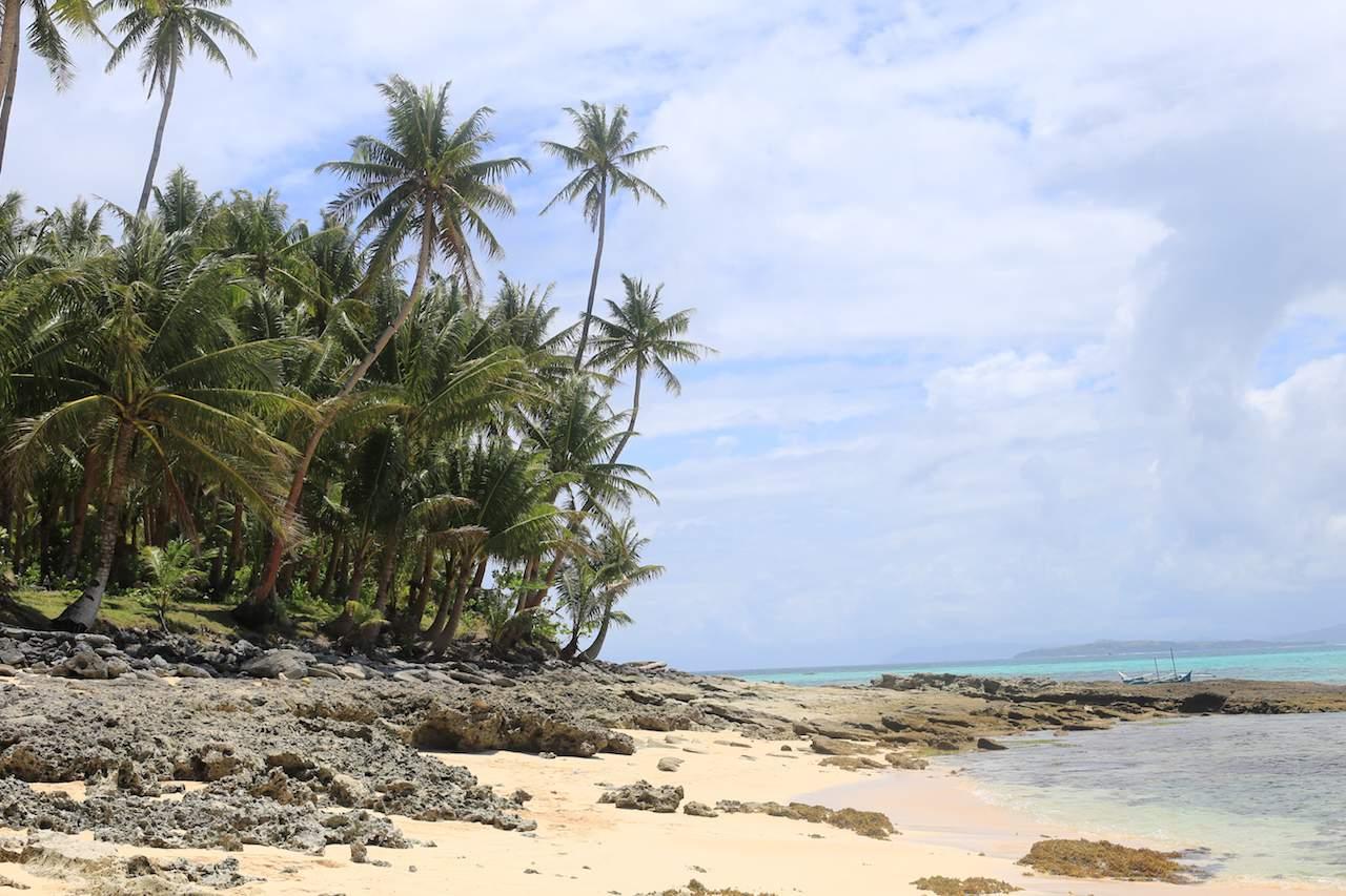 Siargao beach rocks and palm trees