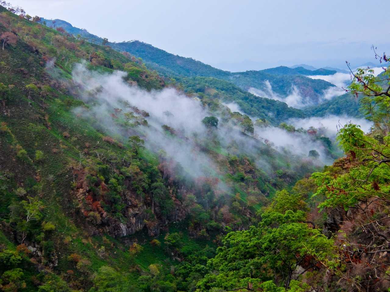 Sri Lanka road trip - Ella
