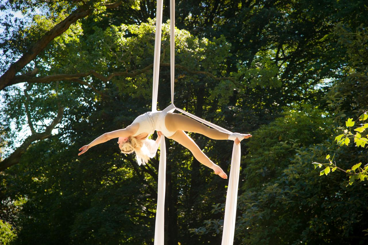 Timber Festival - Whispering Woods - aerial workshops and performance in the trees