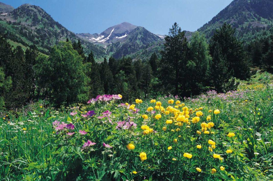 Vall de Sorteny, Andorra