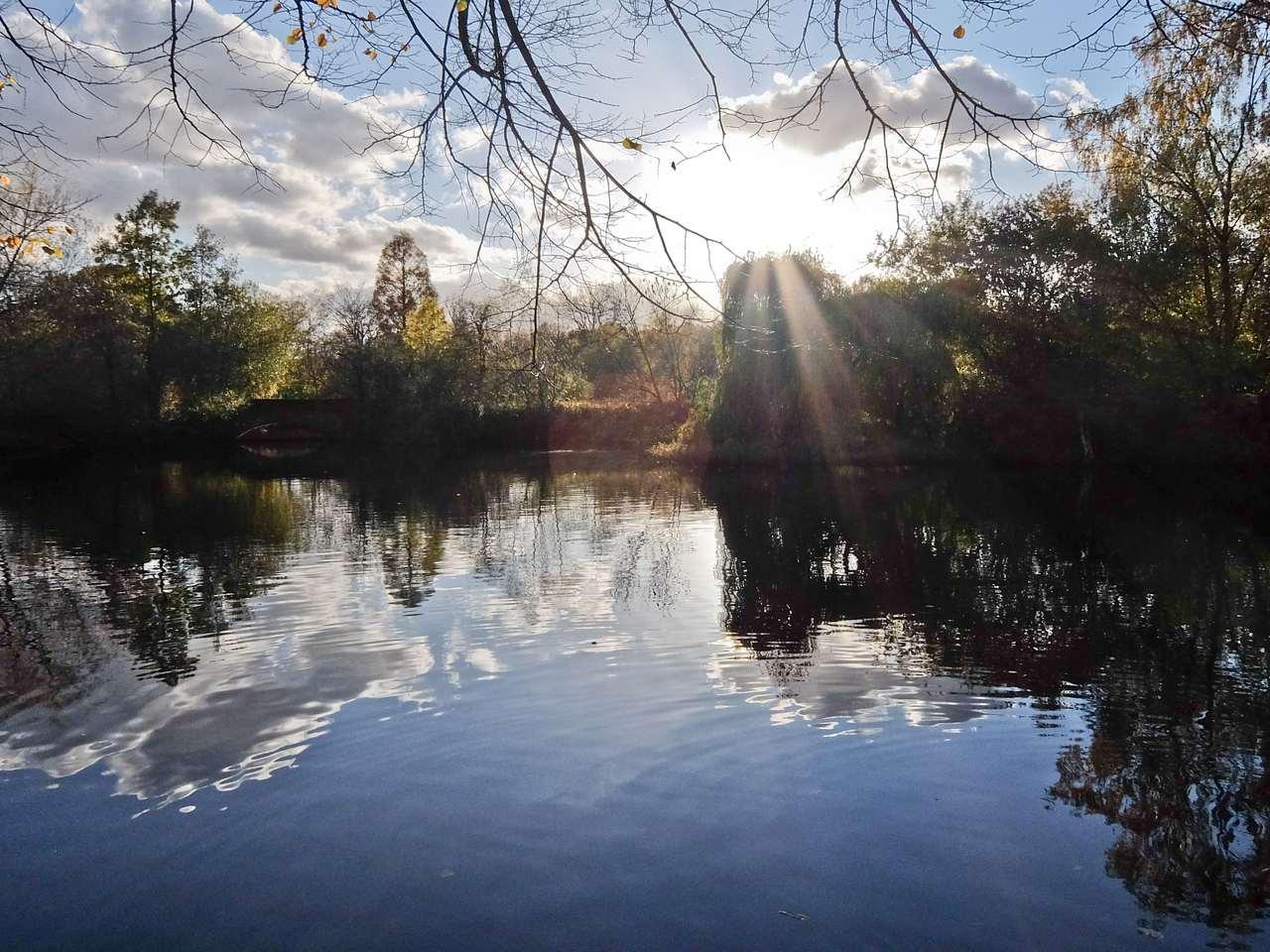 Wandsworth common lake