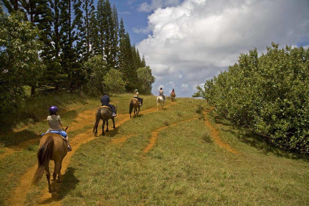 Western Canada - Horseback riders