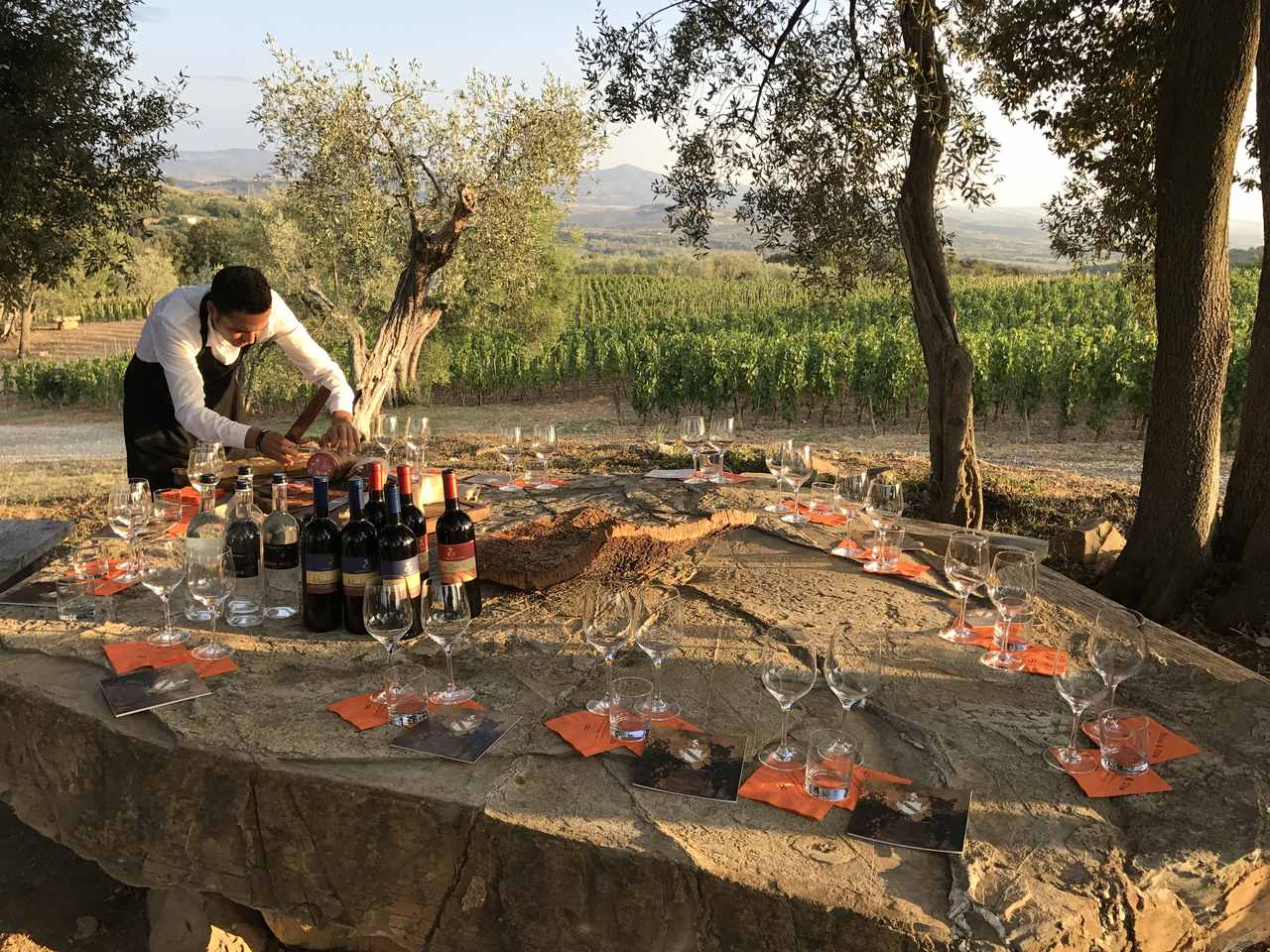 Wine-tasting-in-the-vineyards-in-Italy-with-Wineris