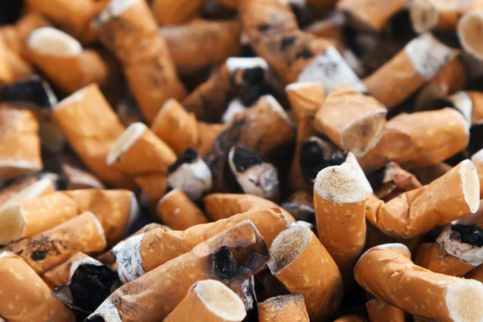 cigarette budds
