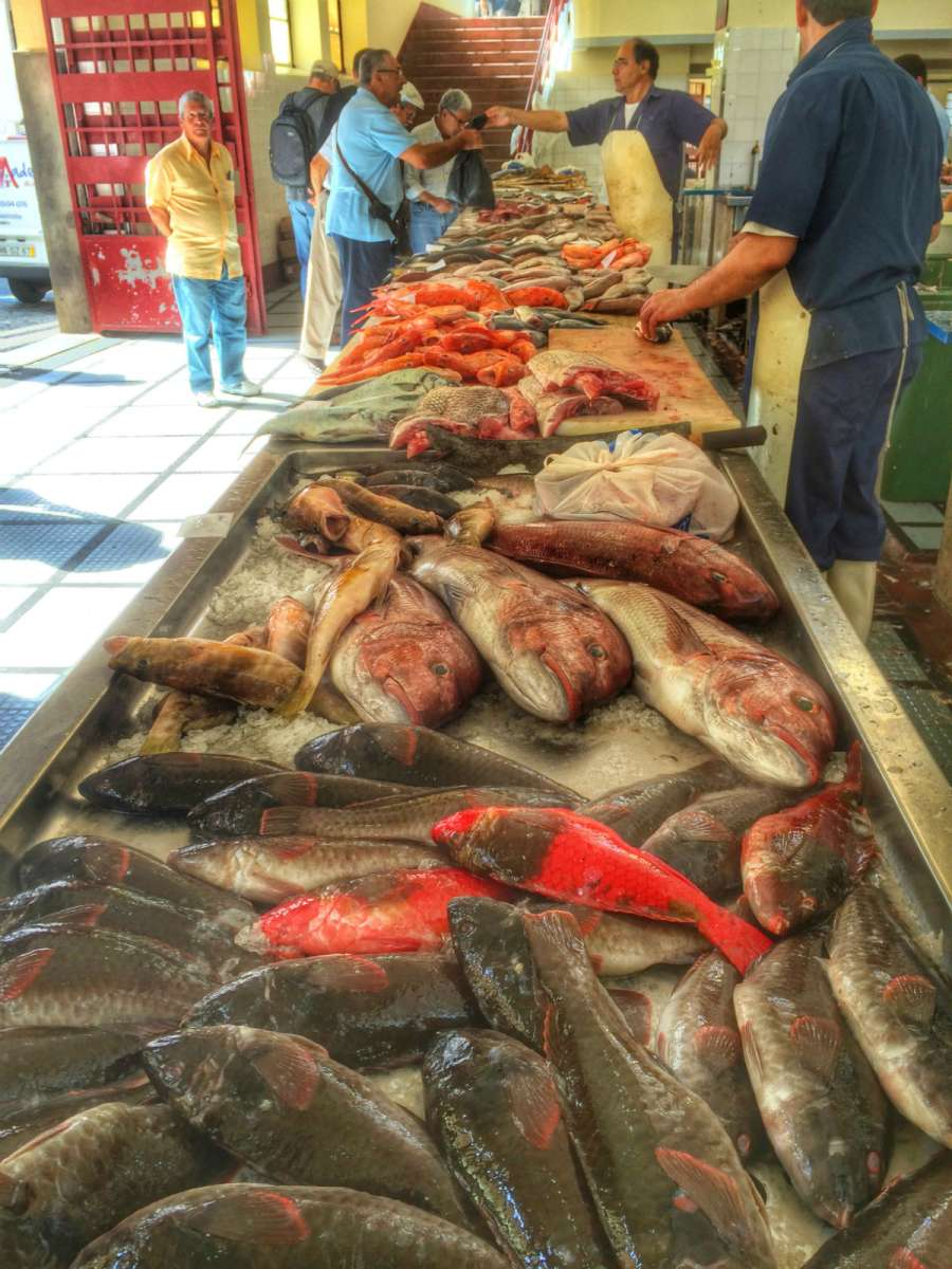 Market in Funchal, Madeira: fish