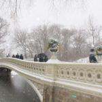 new york bridge in central park in winter