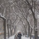 new york central park in winter couple walking